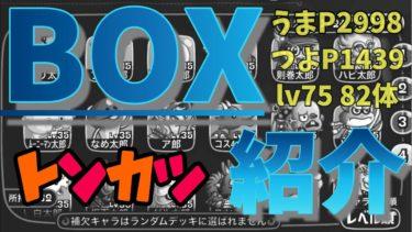 BOX紹介(トンカツ編)2020.6.18